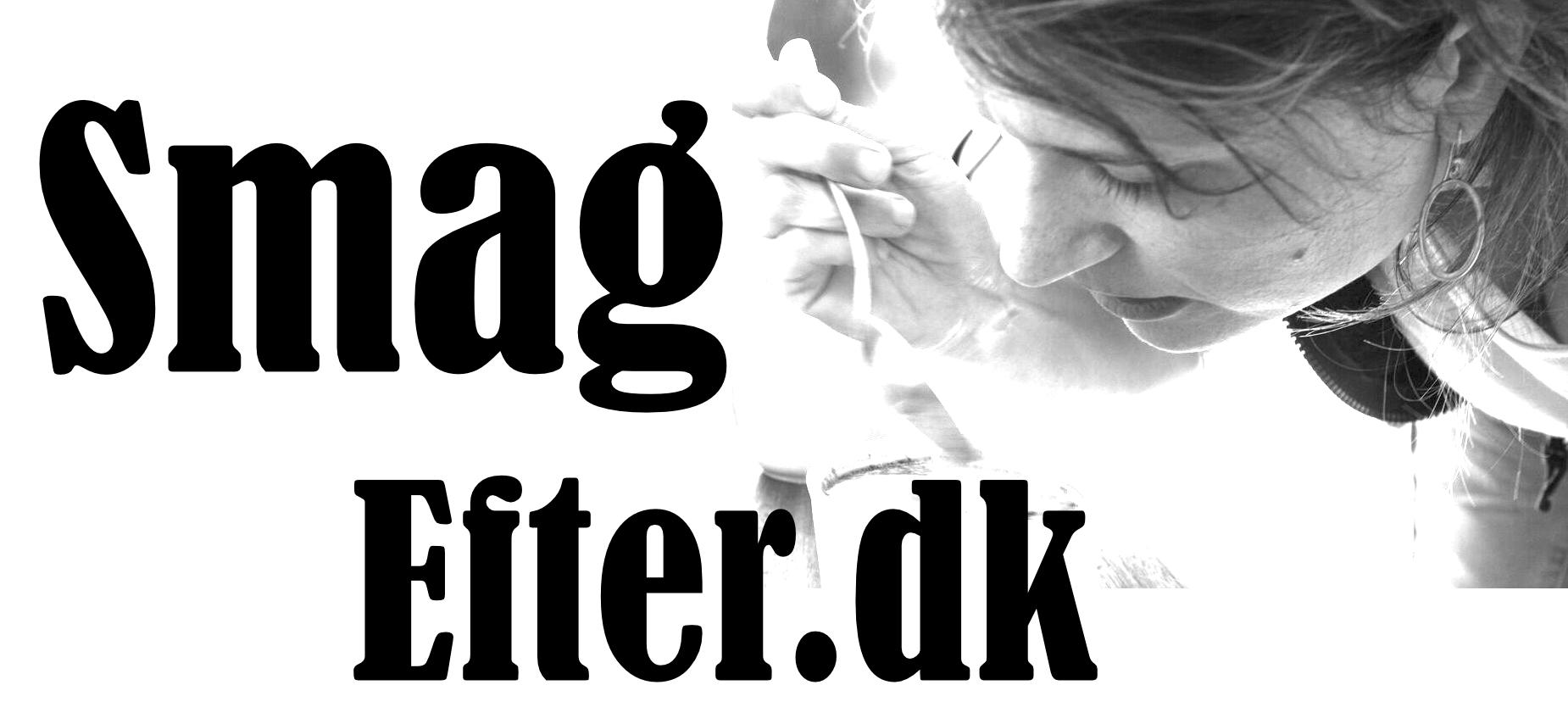 SmagEfter.dk Logo